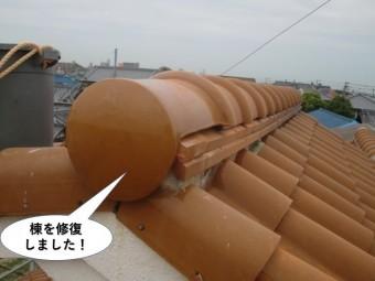 和泉市のドーマーの棟を修復しました