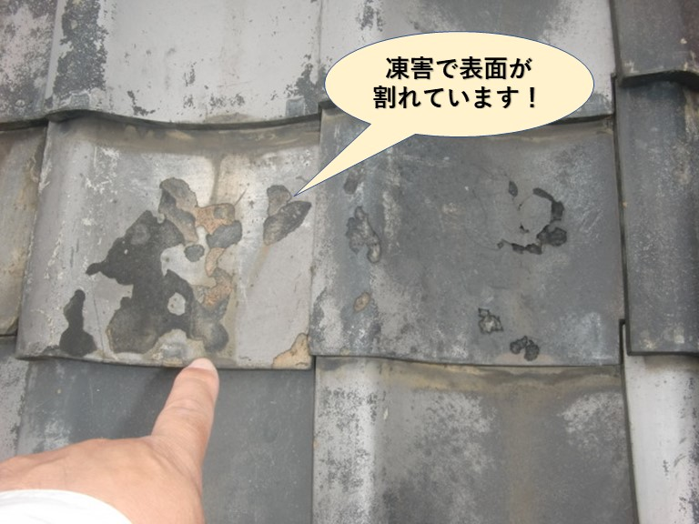 岸和田市の瓦が凍害で割れています