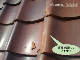 泉大津市の瓦が凍害で割れています