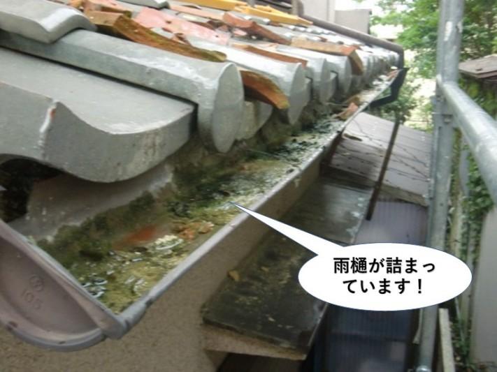 泉佐野市の下屋の雨樋が詰まっています