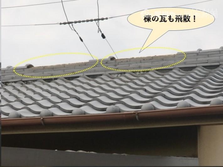 貝塚市の棟の瓦も飛散!