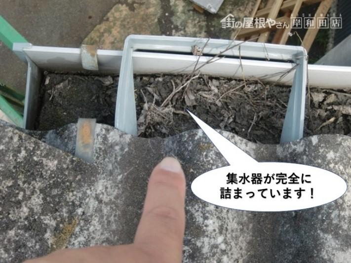 岸和田市の集水器が完全に詰まっています