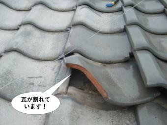 泉佐野市の瓦が割れて周囲もズレています