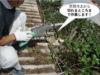 岸和田市の倉庫の屋根の上から切れるところまで作業します