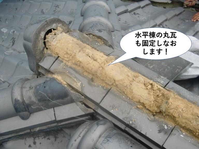 泉大津市の水平棟の丸瓦も固定しなおします