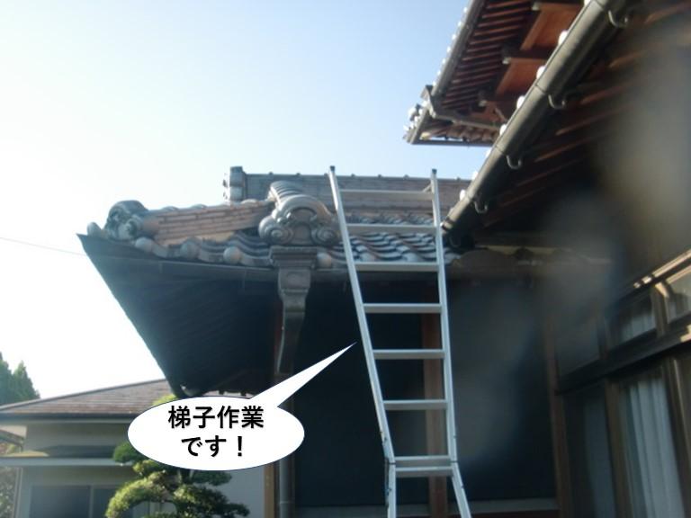 阪南市で梯子作業です