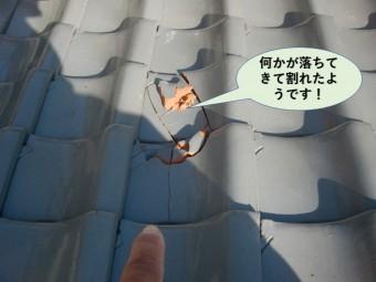 岸和田市の屋根に何かが落ちてきて瓦が割れたようです