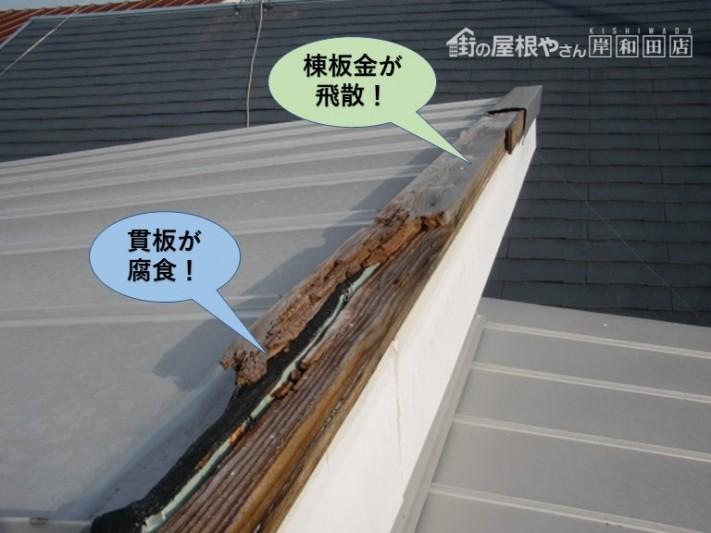貝塚市の棟板金が飛散し貫板が腐食