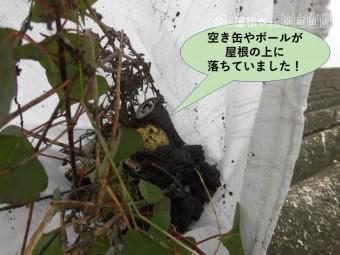 岸和田市のガレージの屋根に空き缶やボールが落ちていました