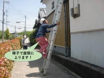 泉佐野市で梯子で屋根に上ります!