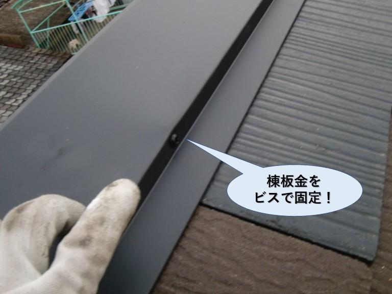 泉大津市の棟板金をビスで固定