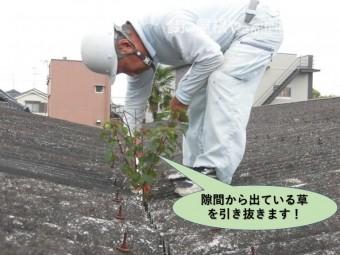 岸和田市のガレージの隙間から出ている草を引き抜きます