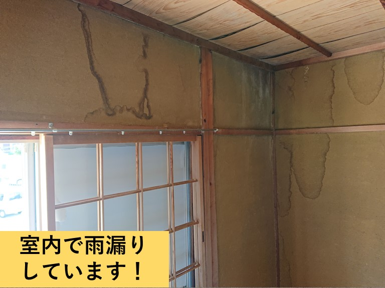 泉大津市の室内で雨漏りしています
