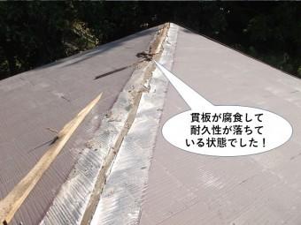 岸和田市の棟の貫板が腐食して耐久性が落ちている状態でした