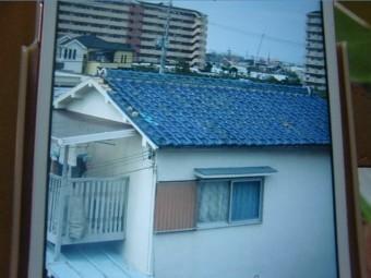 岸和田市の台風被害当時の写真2