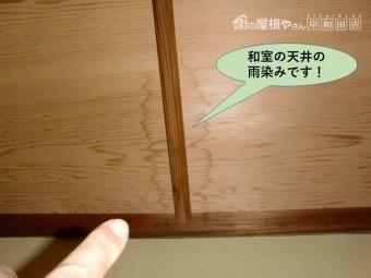 岸和田市の和室の天井の雨染み
