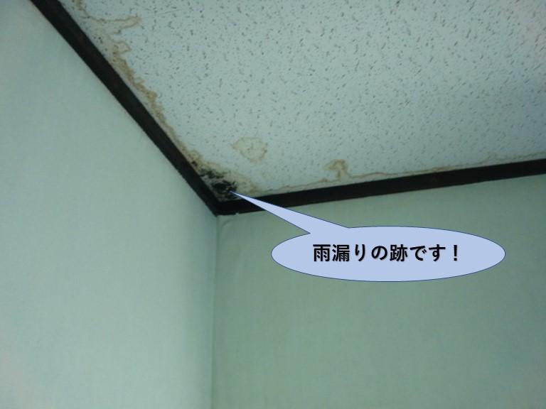 岸和田市の二階のお部屋の雨漏りの跡です!