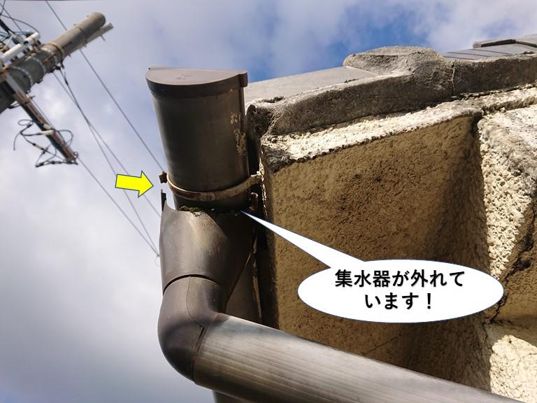 泉大津市の集水器が外れています