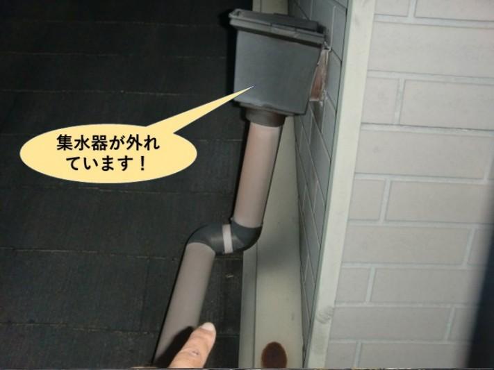 岸和田市の集水器が外れています