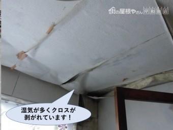 岸和田市の洗面所の湿気が多くクロスが剥がれています!