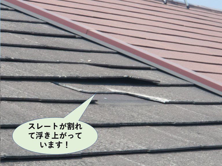 泉大津市のスレートが割れて浮き上がっています