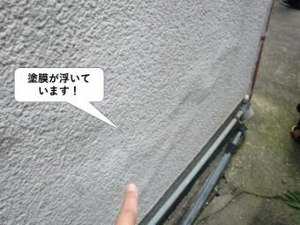 和泉市の外壁の塗膜が浮いています