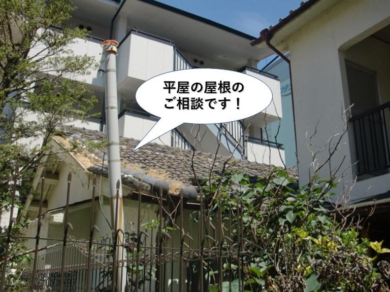 泉大津市の平屋の屋根のご相談