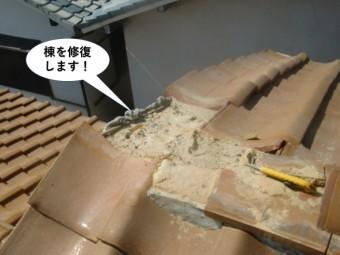 和泉市の棟を修復します