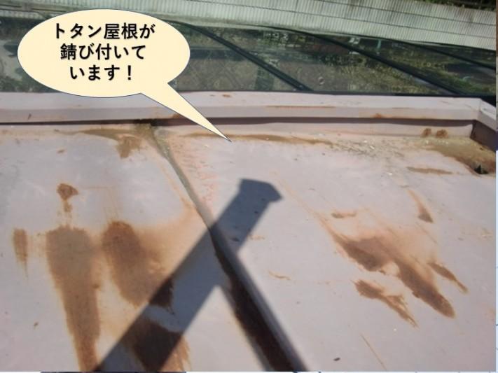 泉南市のトタン屋根が錆び付いています