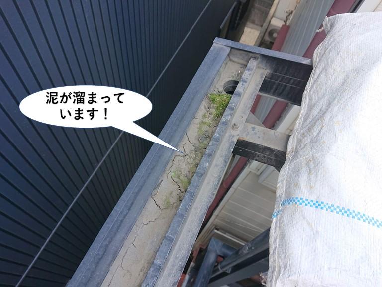 泉佐野市のテラスの樋に泥が溜まっています