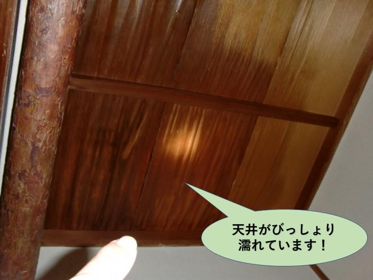 岸和田市の玄関天井がびっしょり濡れています