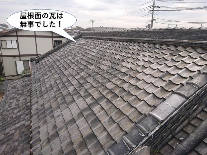 岸和田市の屋根面の瓦は無事でした
