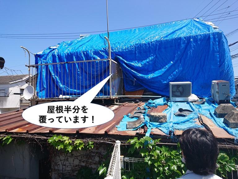 熊取町の屋根半分を覆っています
