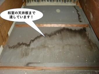 貝塚市の和室の天井板まで達しています