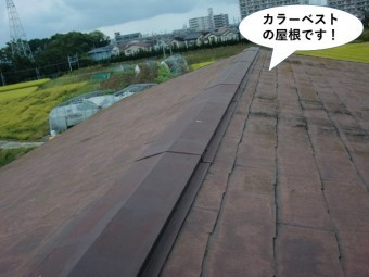貝塚市のカラーベストの屋根です