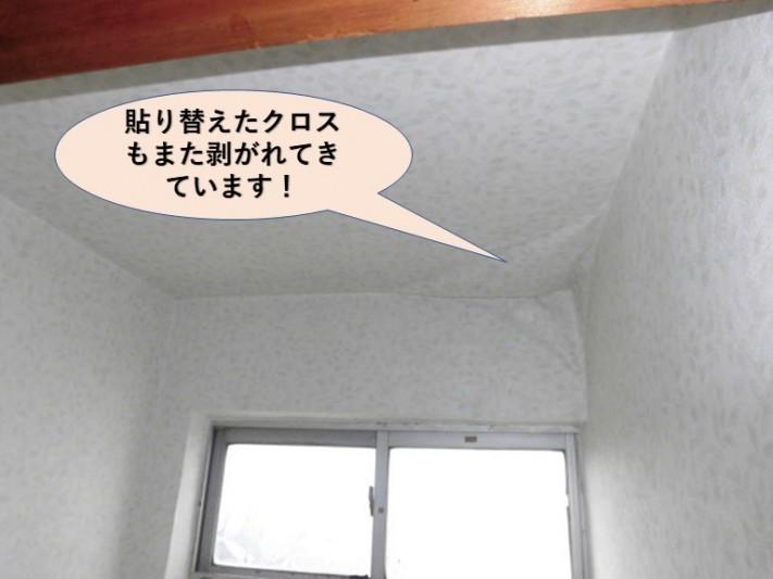 岸和田市のトイレの張替えたクロスも剥がれてきています