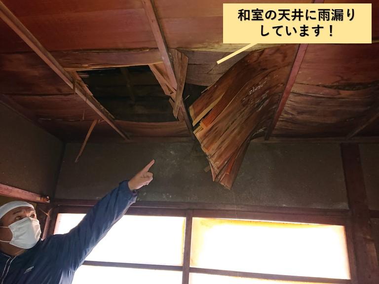 岸和田市の和室の天井に雨漏りしています
