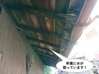 貝塚市の玄関屋根の軒裏に水が廻っています