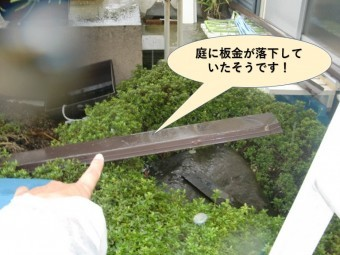 岸和田市の庭に板金が落下していたそうです
