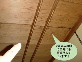 泉大津市の2階の床の間の天井にも雨漏り発生