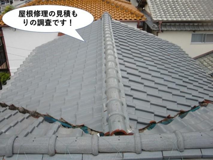 阪南市の屋根修理の見積もりの調査です