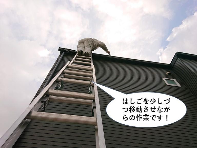 高石市の雨樋掃除ではしご作業