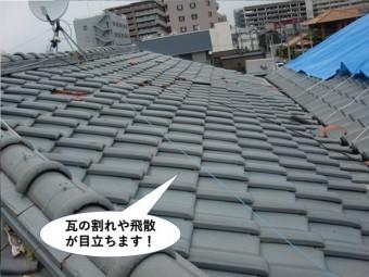 和泉市の屋根の瓦の割れや飛散が目立ちます