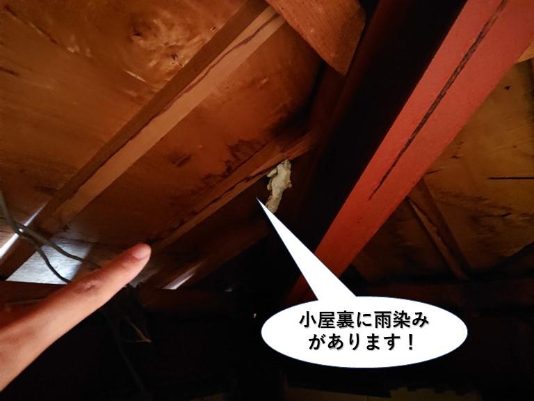岸和田市の小屋裏に雨染みがあります