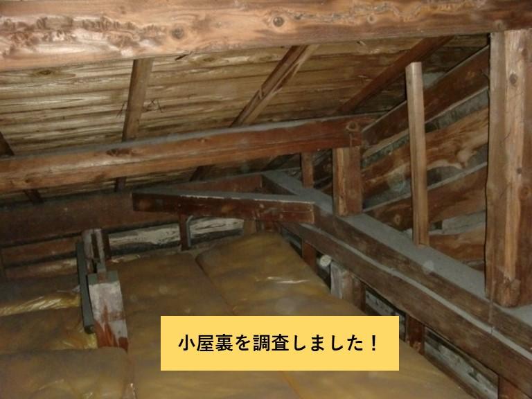 忠岡町の小屋裏を調査