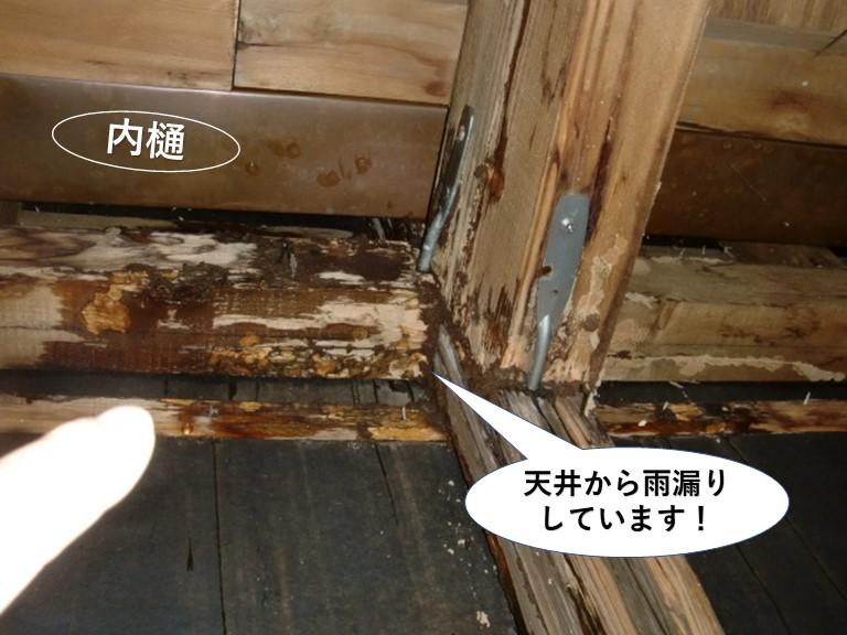 堺市のガレージ内部の天井から雨漏りしています