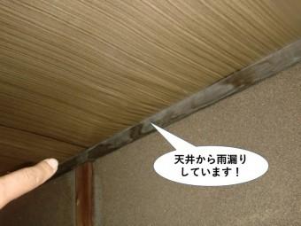 貝塚市の天井から雨漏りしています