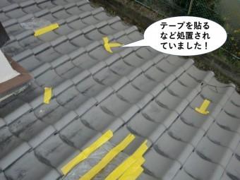岸和田市の下屋をテープを貼るなど処置されていました
