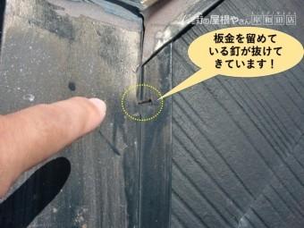 高石市の屋根の板金を留めている釘が抜けてきています