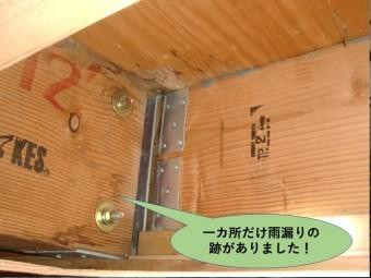 岸和田市の小屋裏に雨漏りの跡